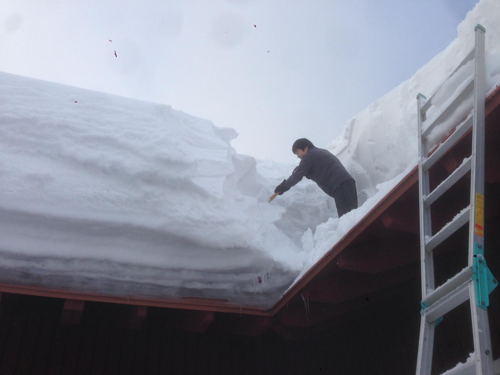 恒例の雪下ろし、やりました!