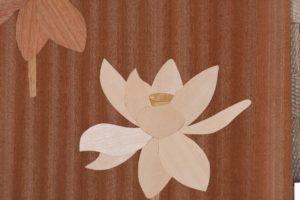 白の蓮の花のテスト